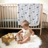 Aden + Anais silky soft Dream Blanket Expedition